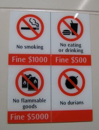 Dont Litter, Jaywalk, or be Nude and the Dos of Singapore